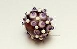"""""""Lilac"""" Glasperle aus Muranoglas (verkauft am Engeli Märt Weil am Rhein)"""
