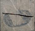coyote`s journey, mischtechnik auf leinwand, 70x63 cm, 2002