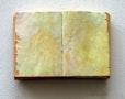 """""""verschollene worte"""", buchobjekt, mischtechnik, 24x36x3.5 cm, 2005"""