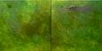 Walk in a Green Sky, 2010,  100x200 cm (Dyptichon) , Öl, Asche auf Leinwand