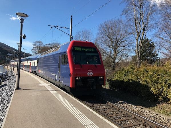 S15: Rapperswil - Niederweningen