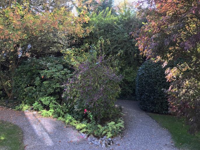 gepflegte Gartenanlage