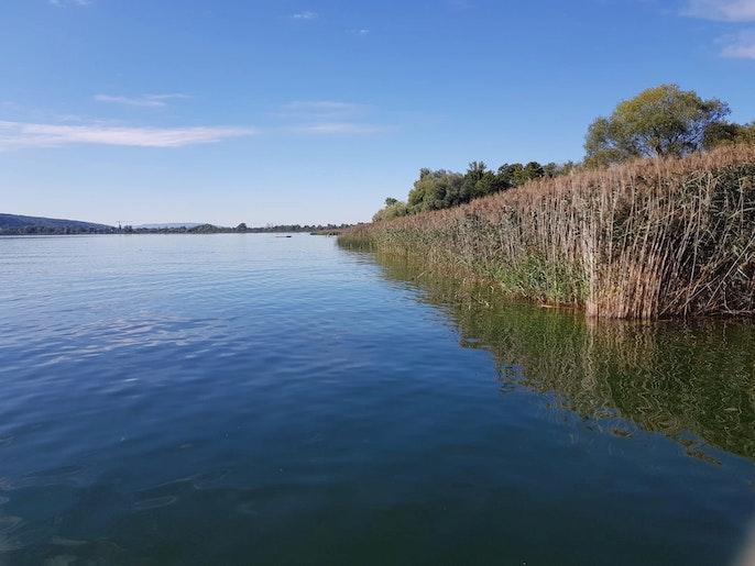 Entspannen am Greifensee