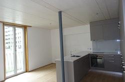 Ess-/Wohnraum / Küche