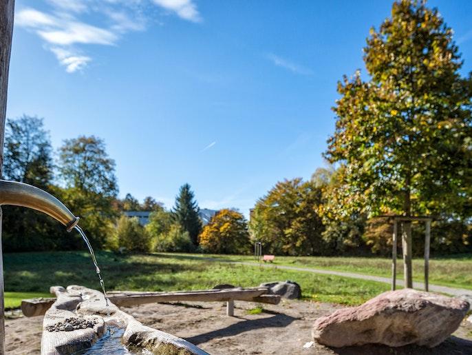 Entspannen: Die Sonne geniessen im lauschigen Park.